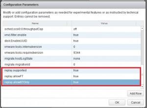 vmware_ft_guest_parameter